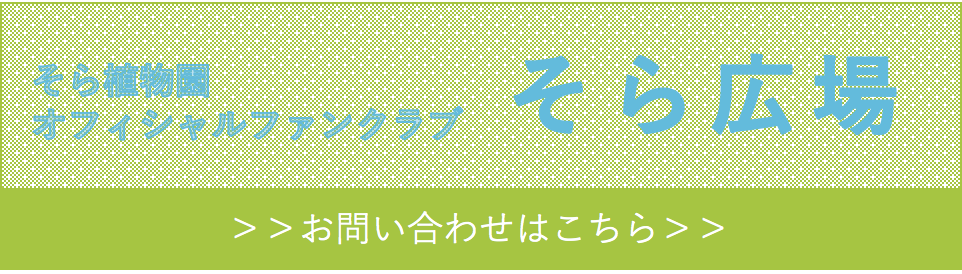 sorahiroba_info_banner